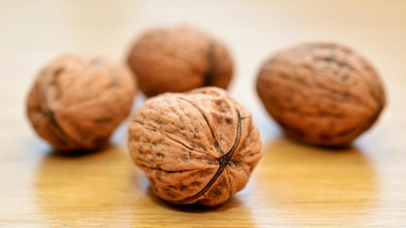 Snack e Spuntini Proteici Herbalife